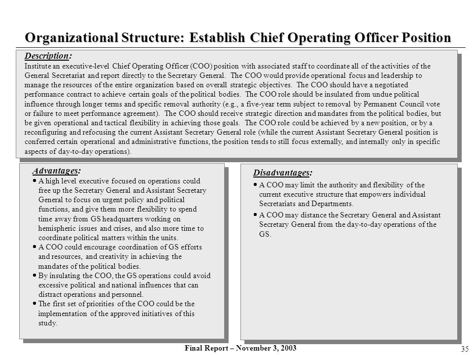 Organizational Structure: Establish Chief Operating Officer Position