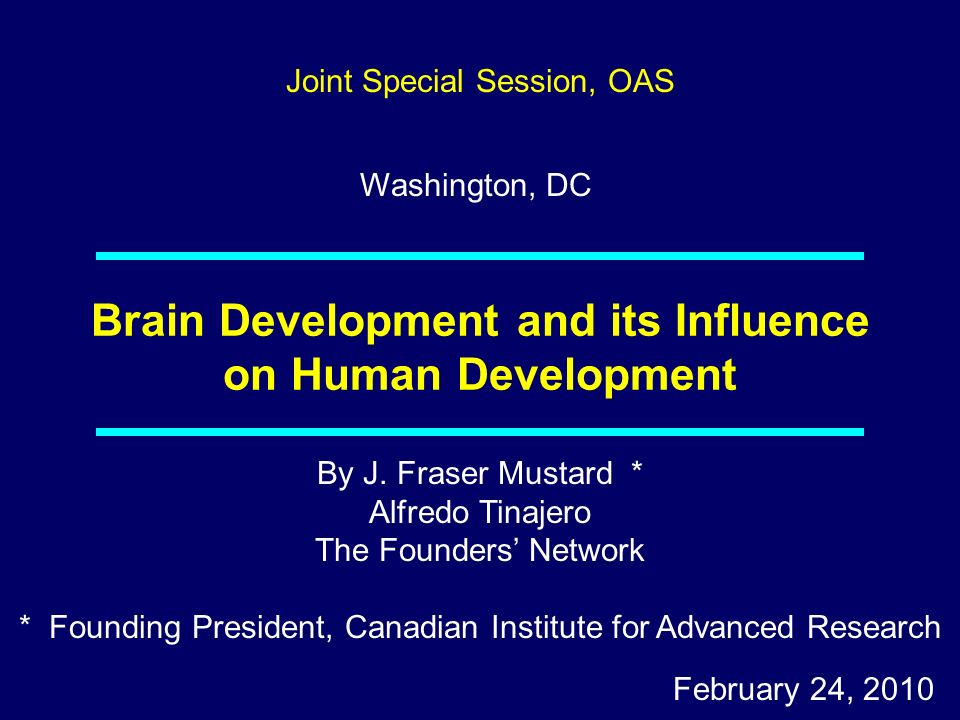 Brain Development and its Influence on Human Development