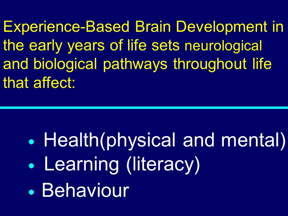 Health(physical and mental) Learning (literacy) Behaviour
