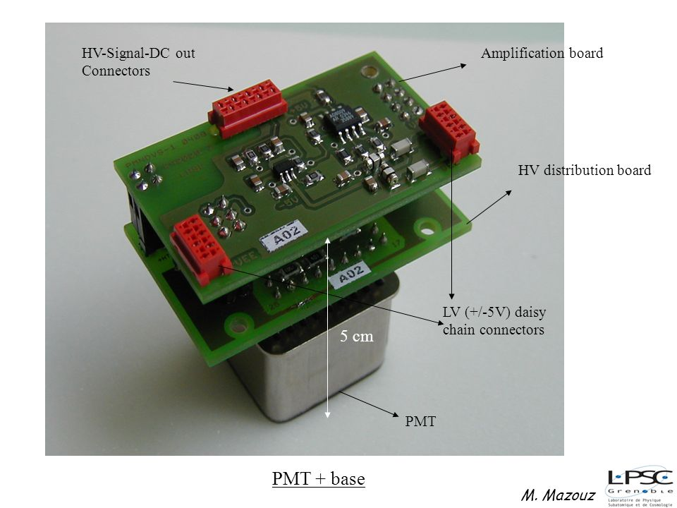 PMT + base 5 cm Amplification board HV distribution board PMT