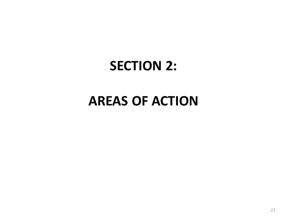 SECTION 2: AREAS OF ACTION