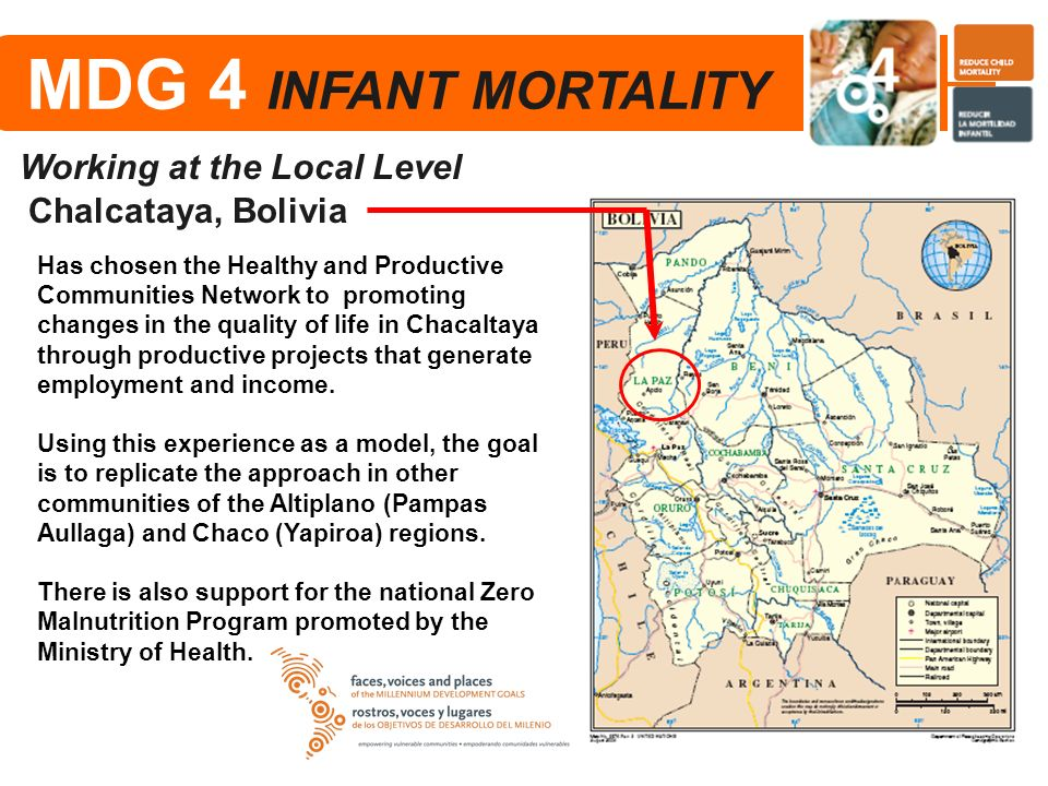 MDG 4 INFANT MORTALITY Working at the Local Level Chalcataya, Bolivia