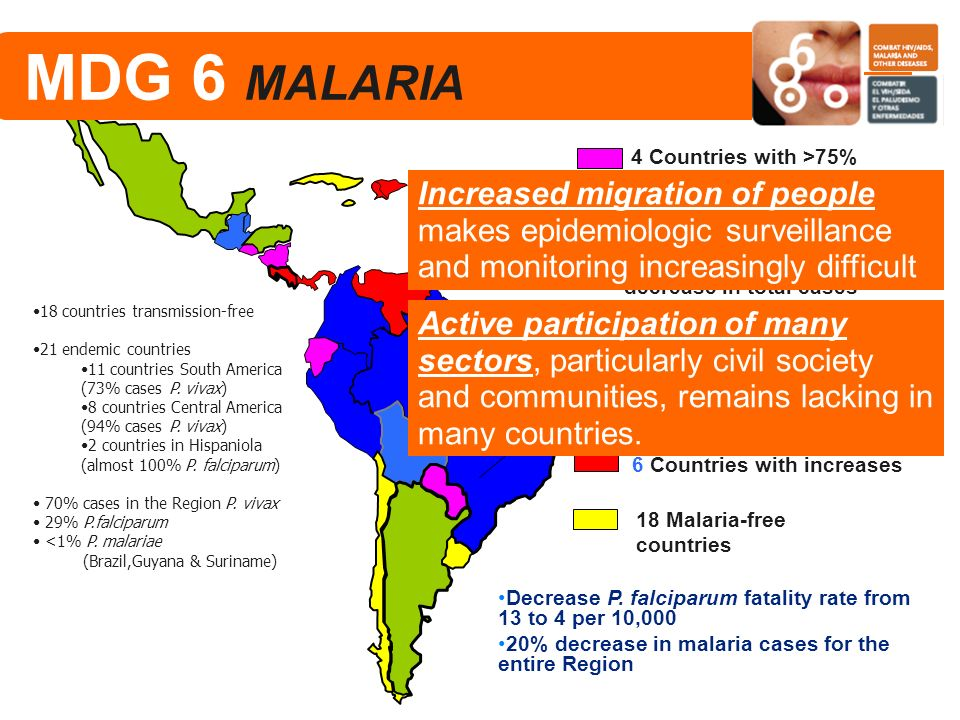 Malaria Situation in the Americas 2000-2006