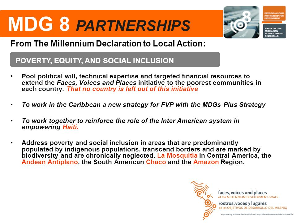 MDG 8 PARTNERSHIPS From The Millennium Declaration to Local Action: