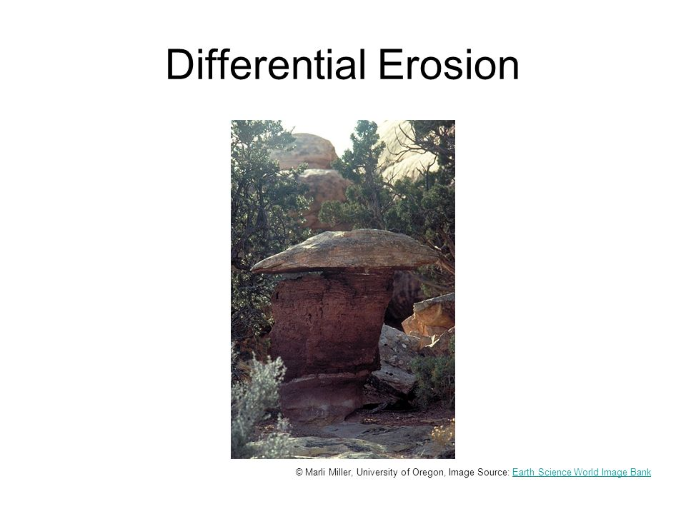 Differential Erosion Differential erosion of a rock.