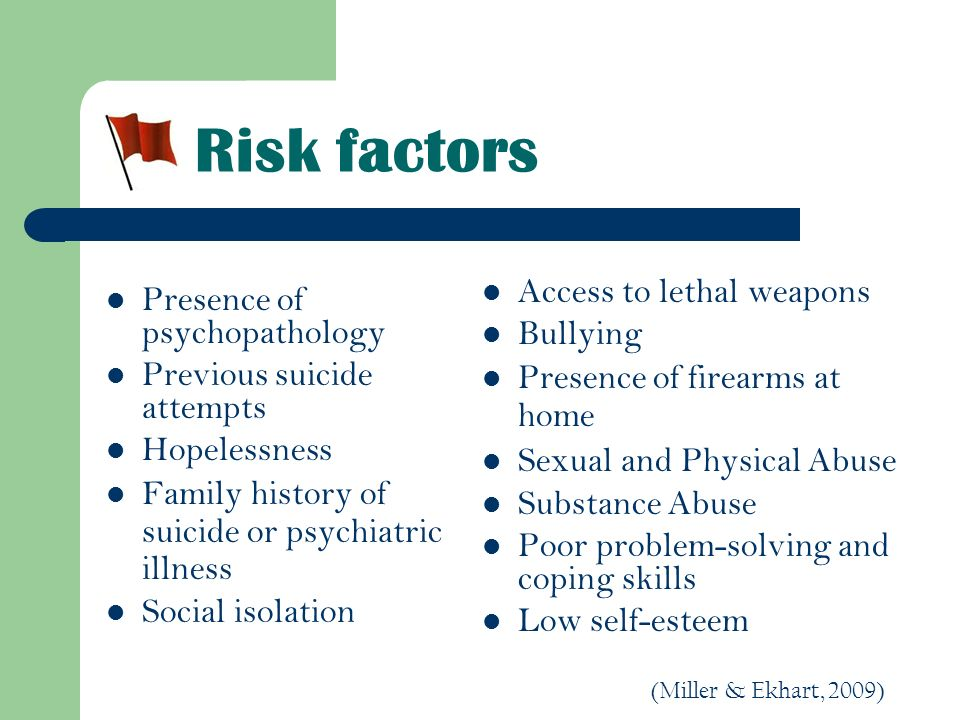 Risk factors Access to lethal weapons Bullying