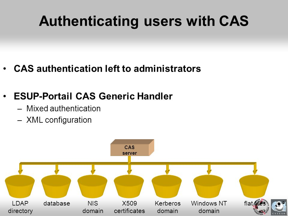 Authenticating users with CAS