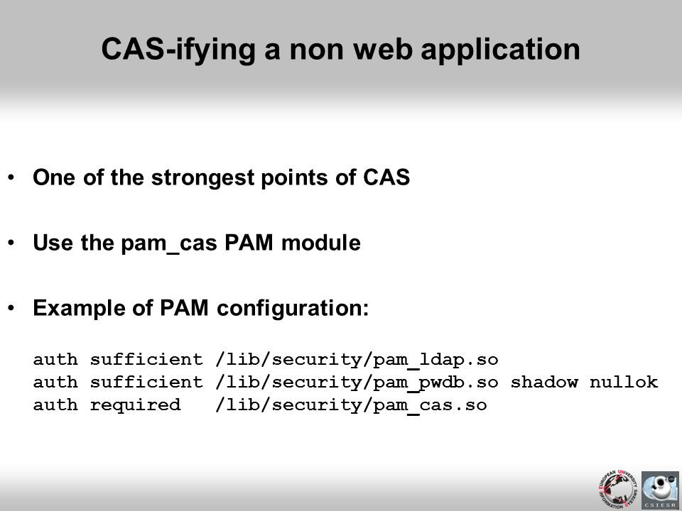 CAS-ifying a non web application