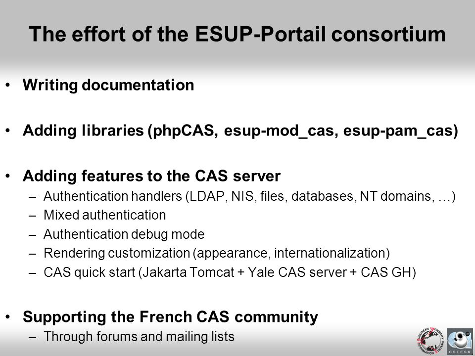 The effort of the ESUP-Portail consortium