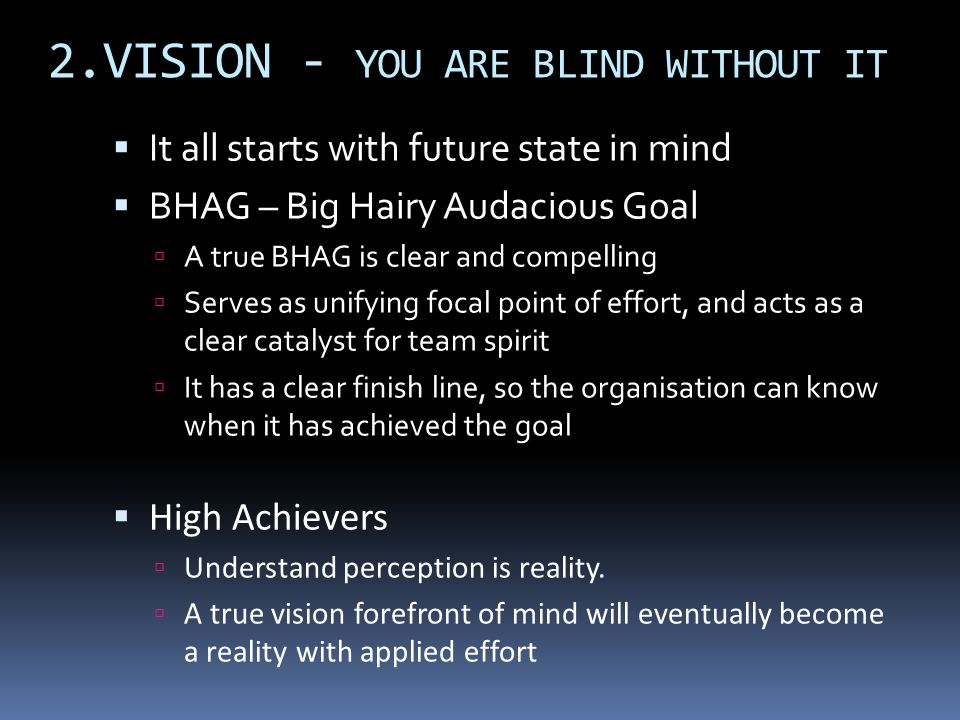2.VISION - YOU ARE BLIND WITHOUT IT