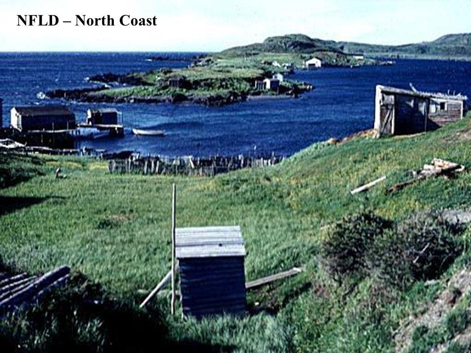 NFLD – North Coast