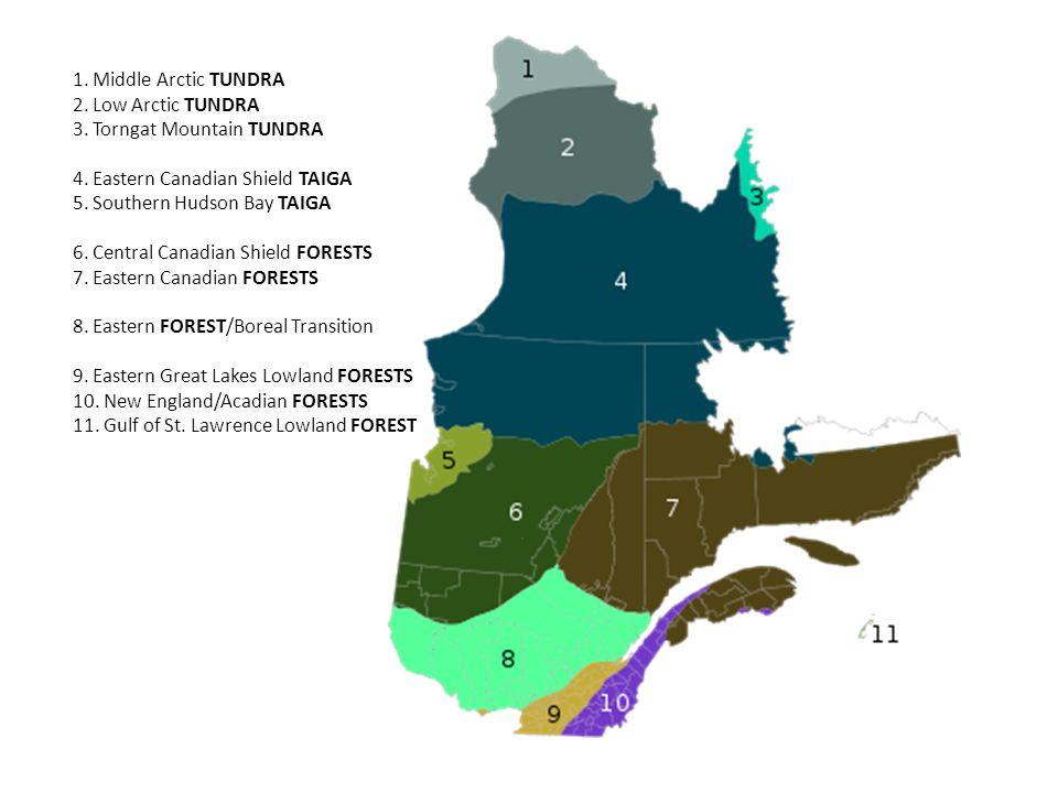 1. Middle Arctic Tundra 2. Low Arctic Tundra 3. Torngat Mountain Tundra