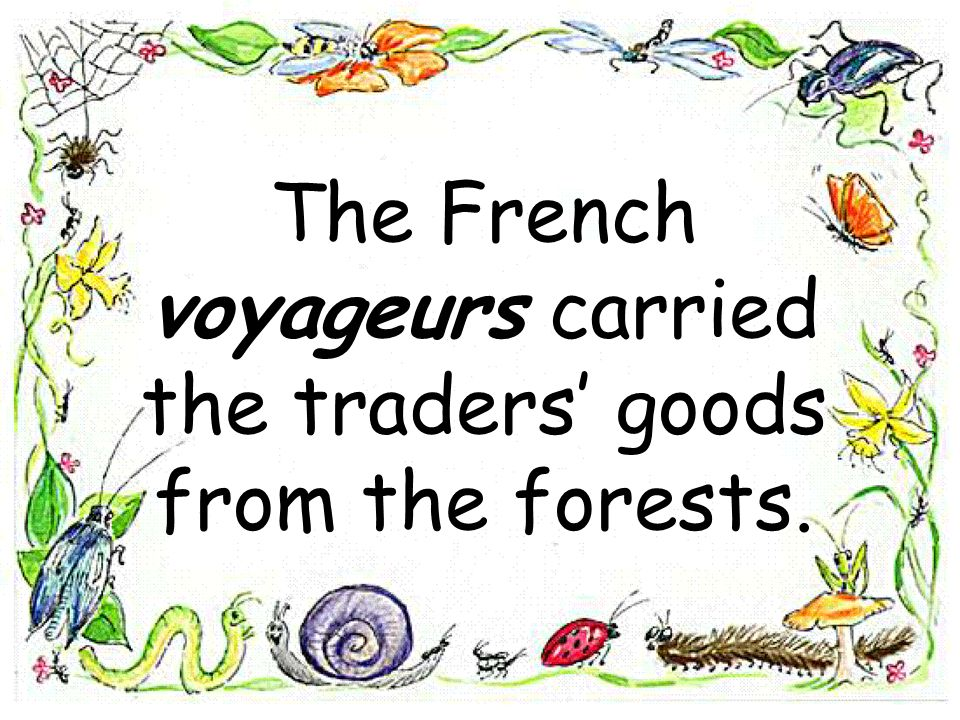 The French voyageurs carried the traders' goods from the forests.