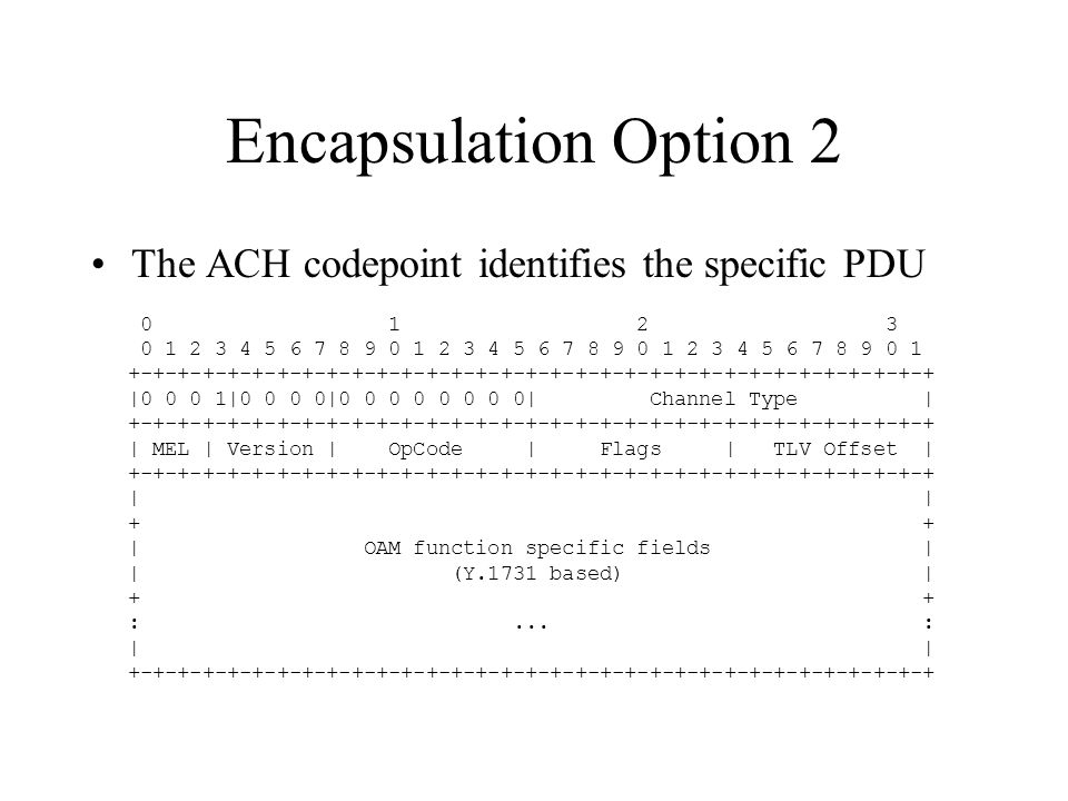 Encapsulation Option 2 The ACH codepoint identifies the specific PDU