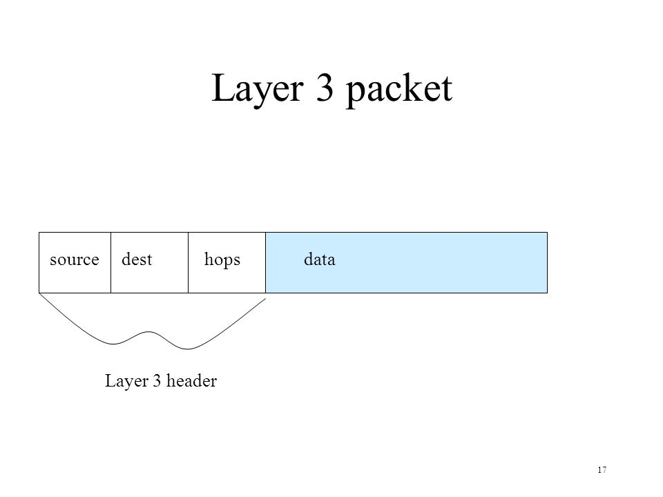 Layer 3 packet source dest hops data Layer 3 header