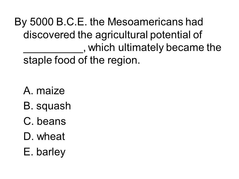 By 5000 B.C.E. the Mesoamericans had discovered the agricultural potential of __________, which ultimately became the staple food of the region.
