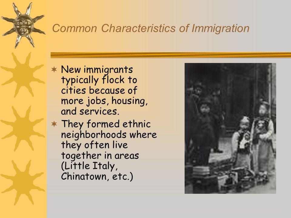Common Characteristics of Immigration