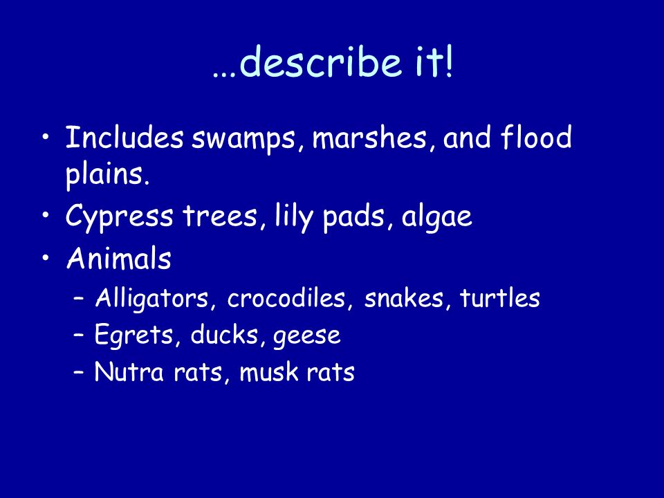 …describe it! Includes swamps, marshes, and flood plains.