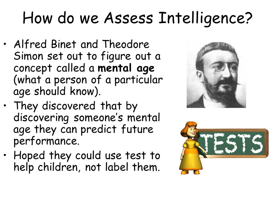How do we Assess Intelligence