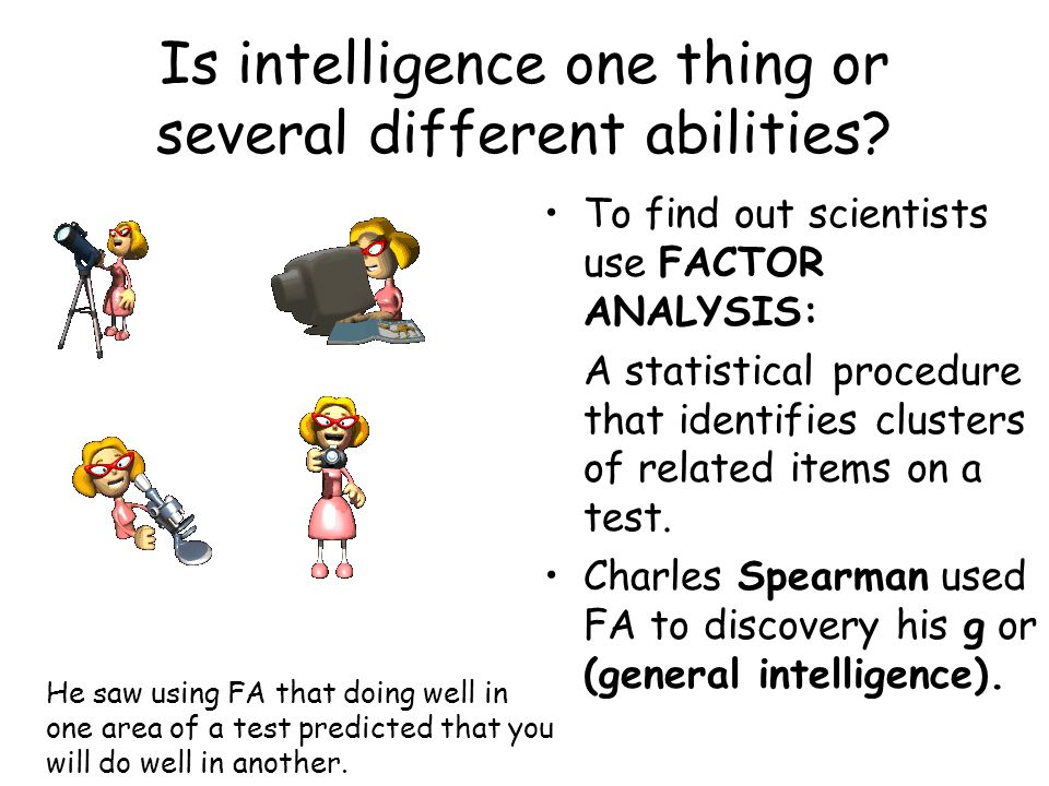 Is intelligence one thing or several different abilities