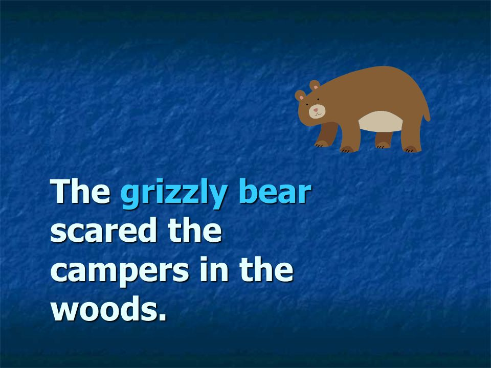 The grizzly bear scared the campers in the woods.