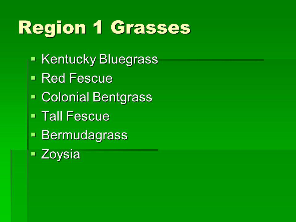 Region 1 Grasses Kentucky Bluegrass Red Fescue Colonial Bentgrass