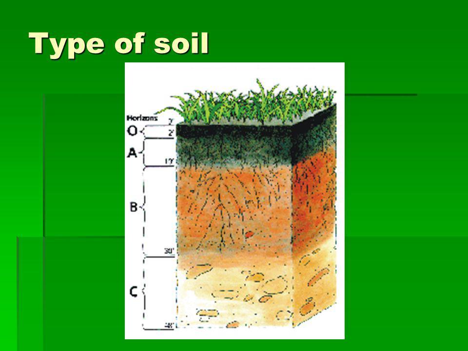 Type of soil