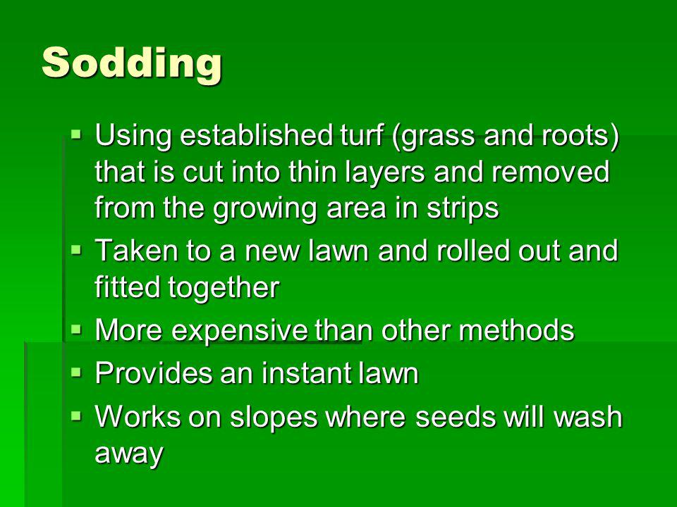 Sodding Using established turf (grass and roots) that is cut into thin layers and removed from the growing area in strips.