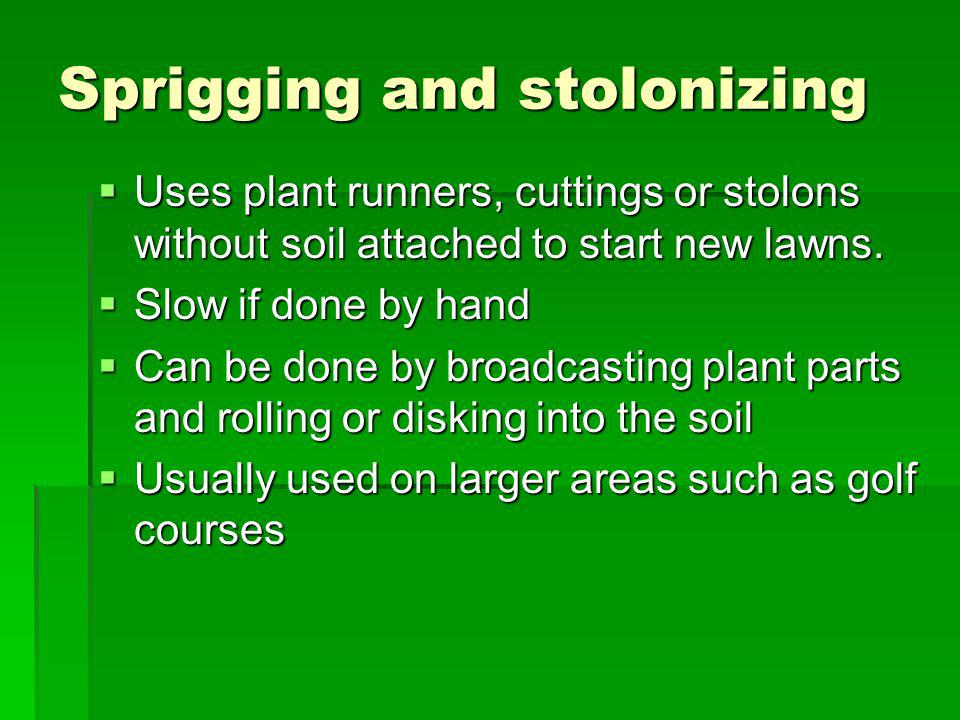 Sprigging and stolonizing