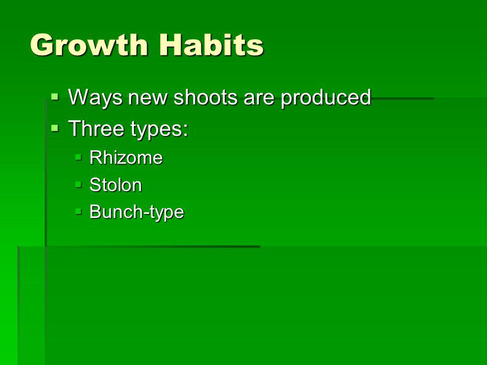 Growth Habits Ways new shoots are produced Three types: Rhizome Stolon