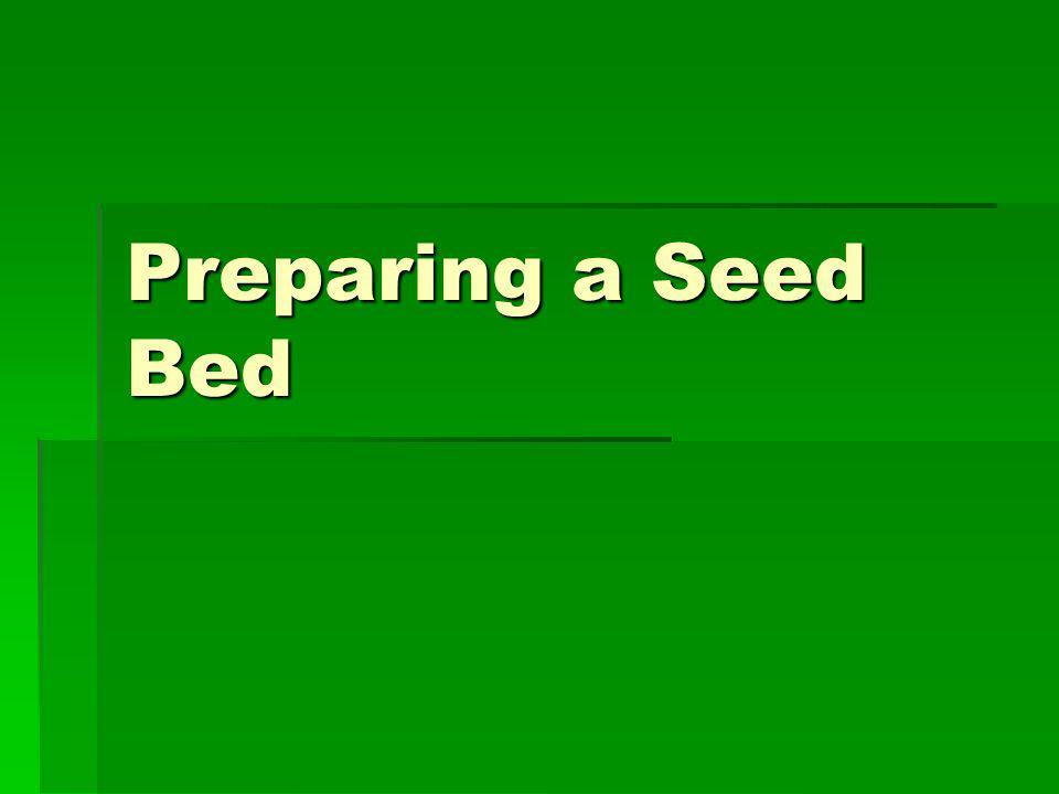 Preparing a Seed Bed