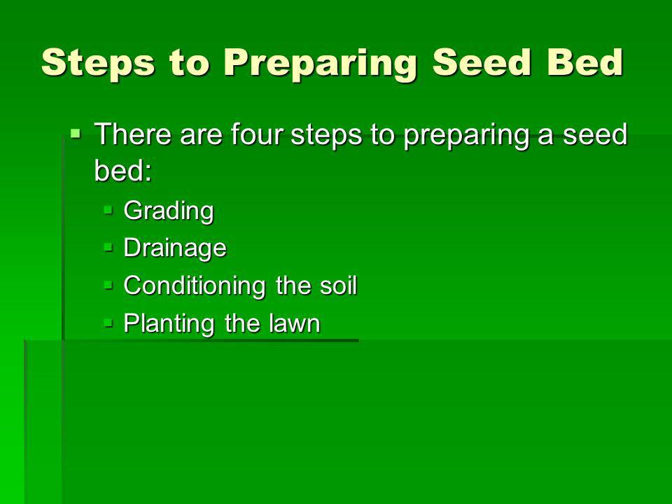 Steps to Preparing Seed Bed