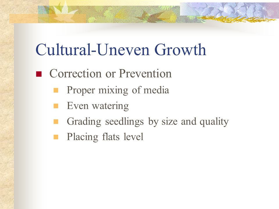 Cultural-Uneven Growth
