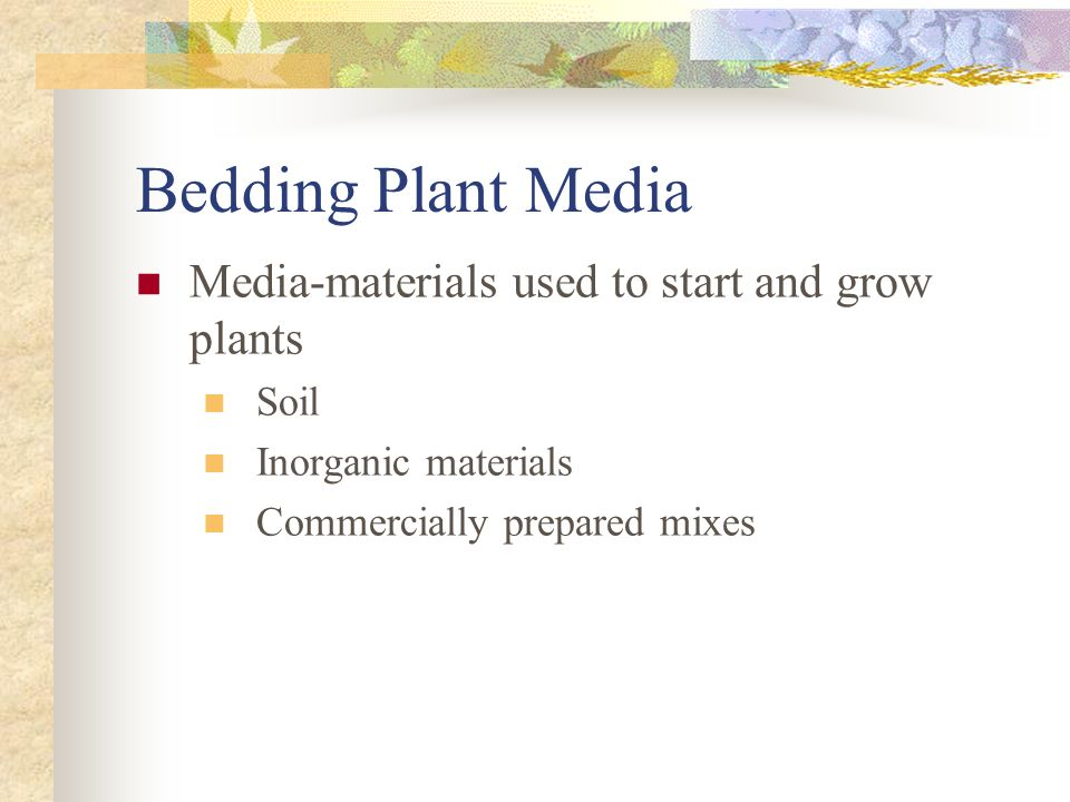 Bedding Plant Media Media-materials used to start and grow plants Soil