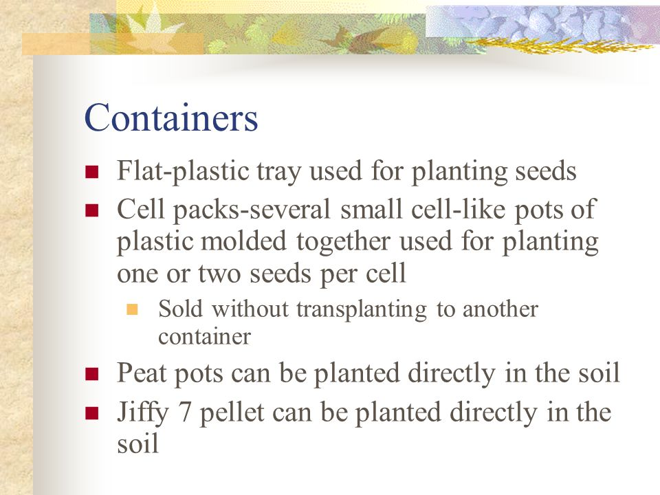 Containers Flat-plastic tray used for planting seeds
