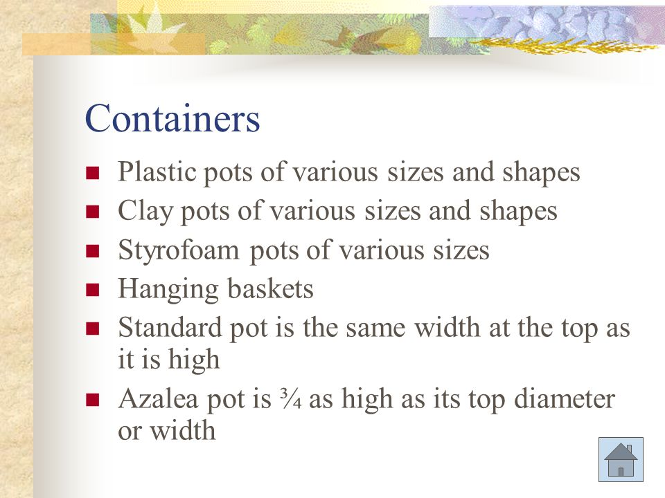 Containers Plastic pots of various sizes and shapes