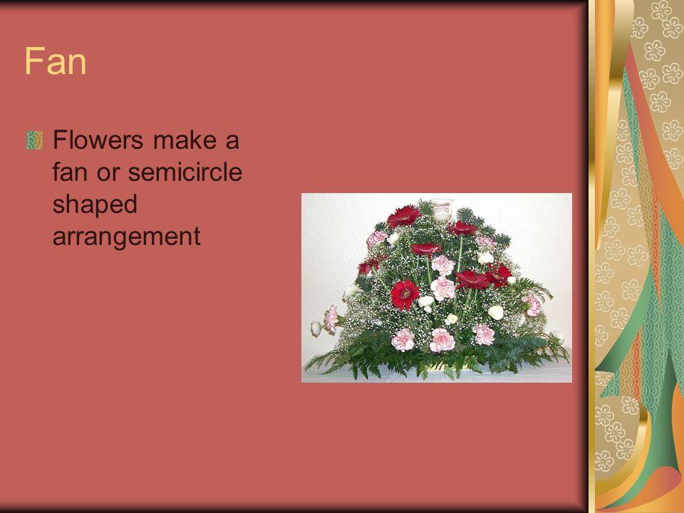 Fan Flowers make a fan or semicircle shaped arrangement
