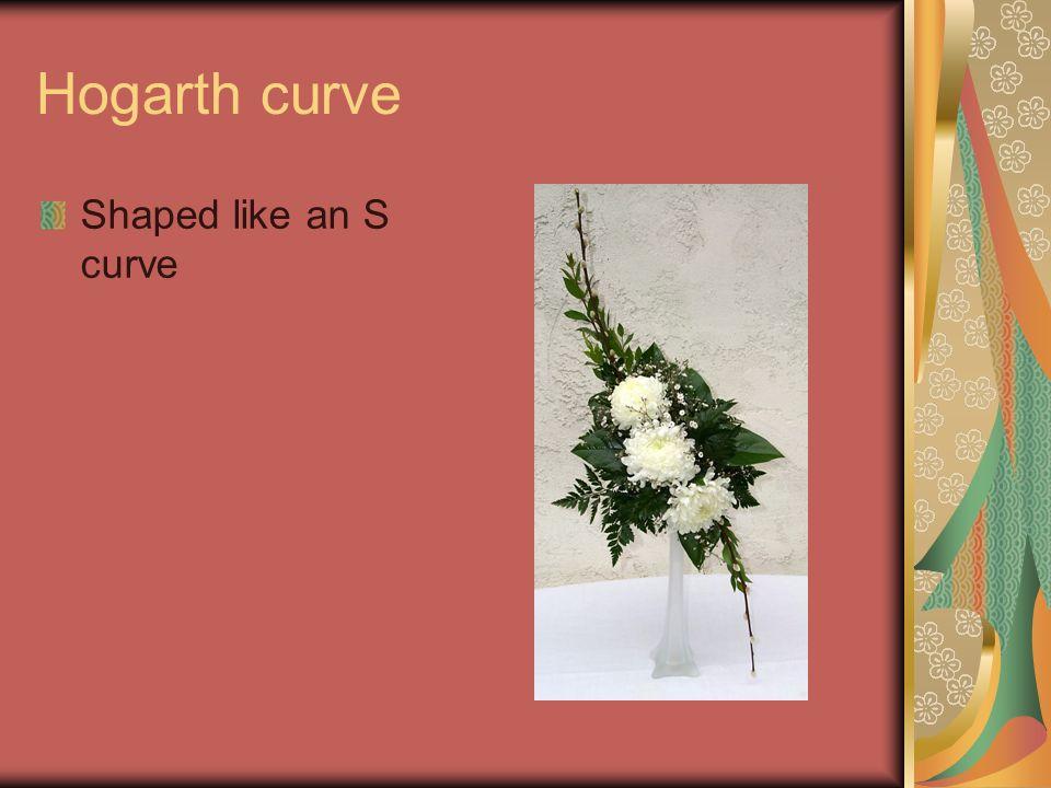 Hogarth curve Shaped like an S curve