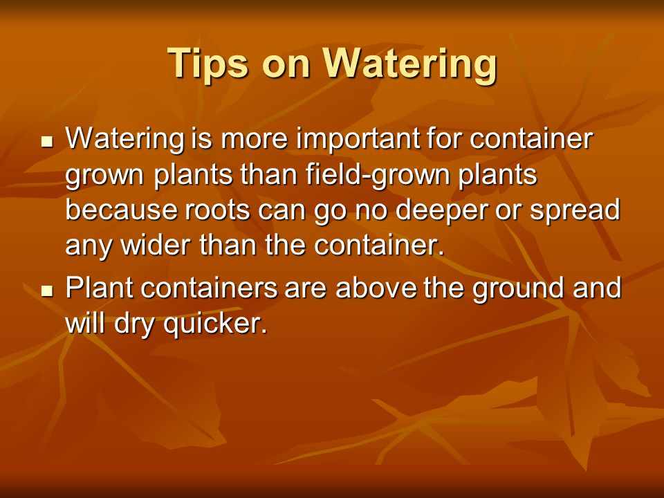 Tips on Watering