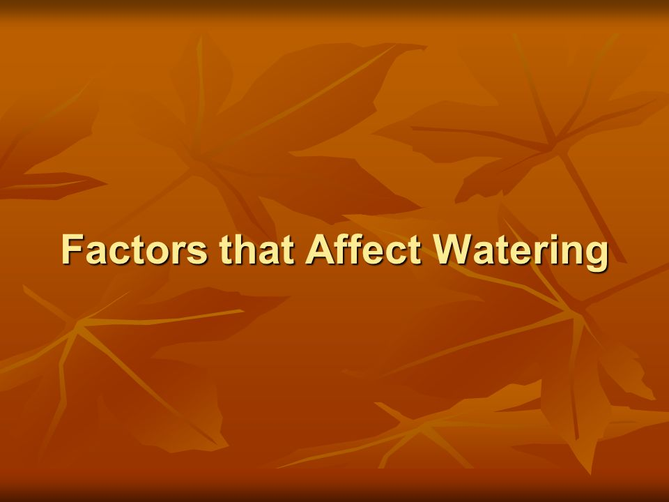 Factors that Affect Watering