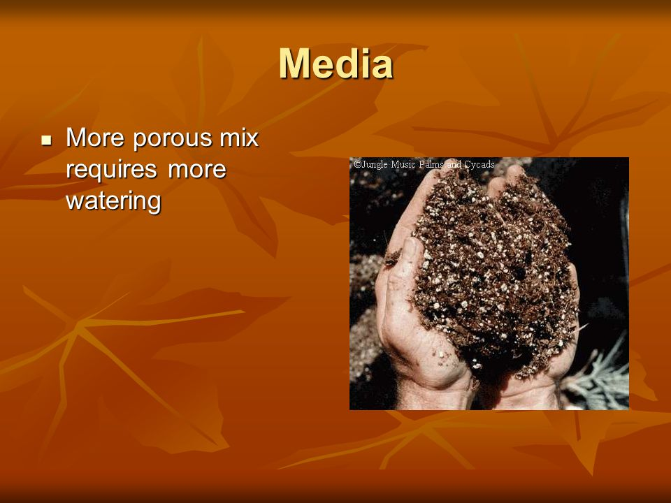 Media More porous mix requires more watering