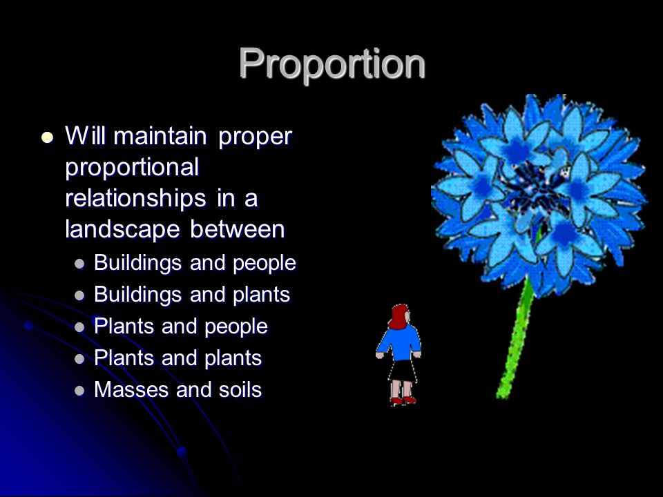 Proportion Will maintain proper proportional relationships in a landscape between. Buildings and people.