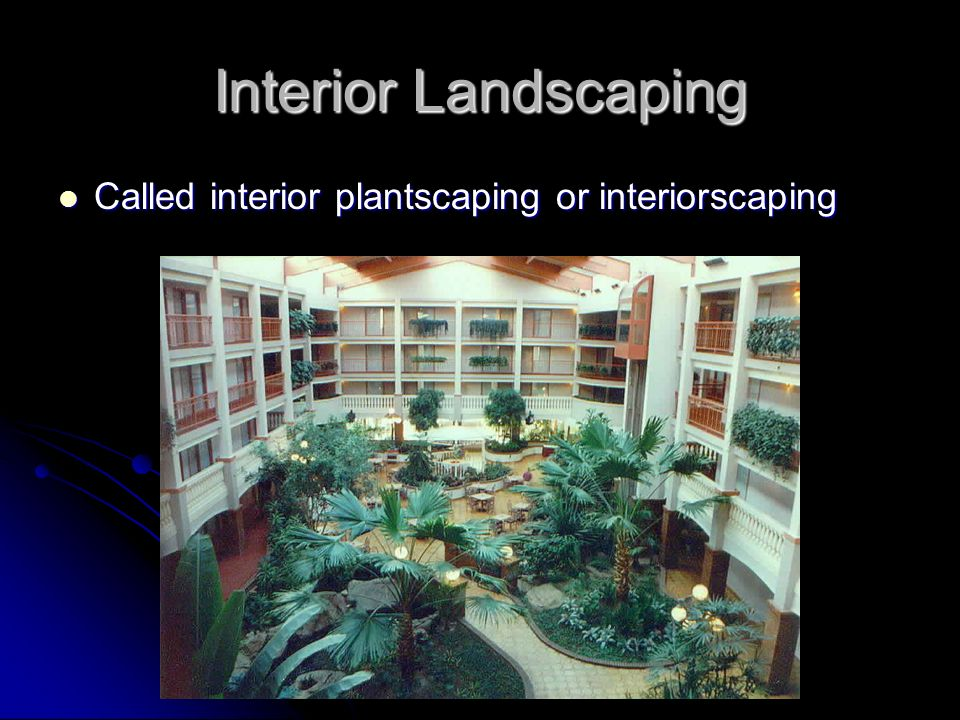 Interior Landscaping Called interior plantscaping or interiorscaping