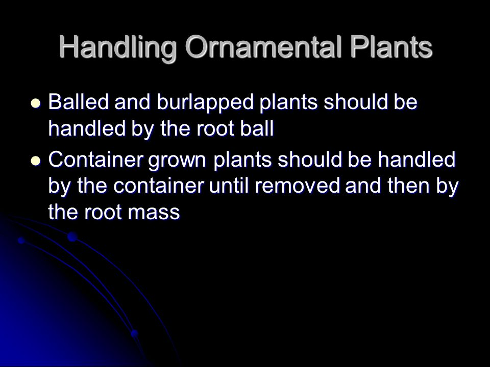 Handling Ornamental Plants