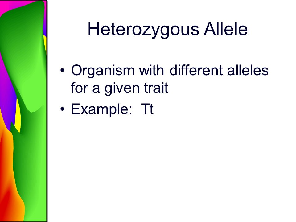 Heterozygous Allele Organism with different alleles for a given trait