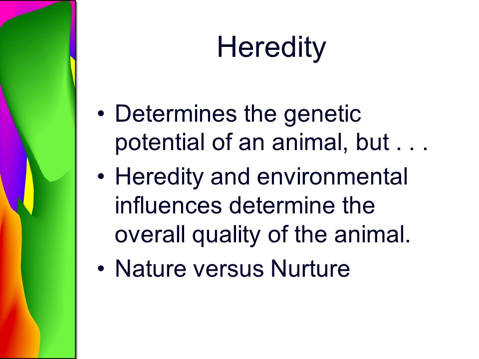 Heredity Determines the genetic potential of an animal, but . . .