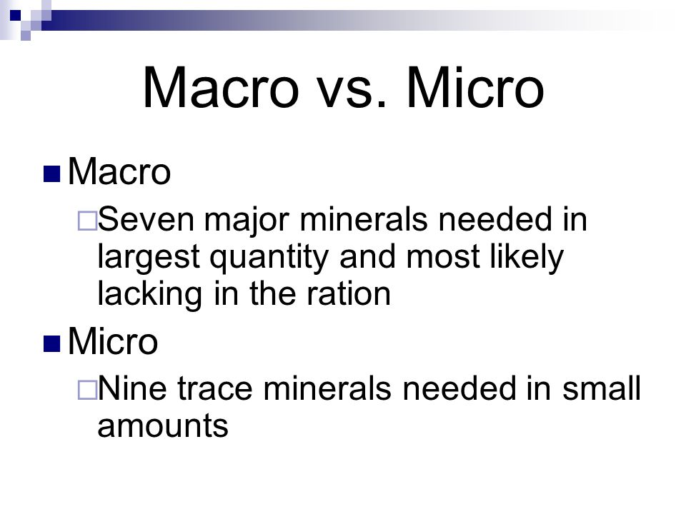 Macro vs. Micro Macro Micro