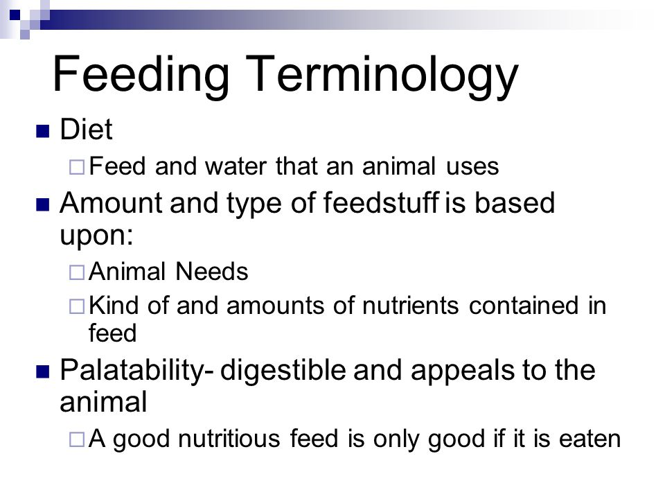 Feeding Terminology Diet Amount and type of feedstuff is based upon: