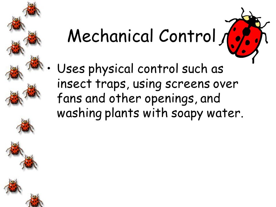 Mechanical Control Uses physical control such as insect traps, using screens over fans and other openings, and washing plants with soapy water.