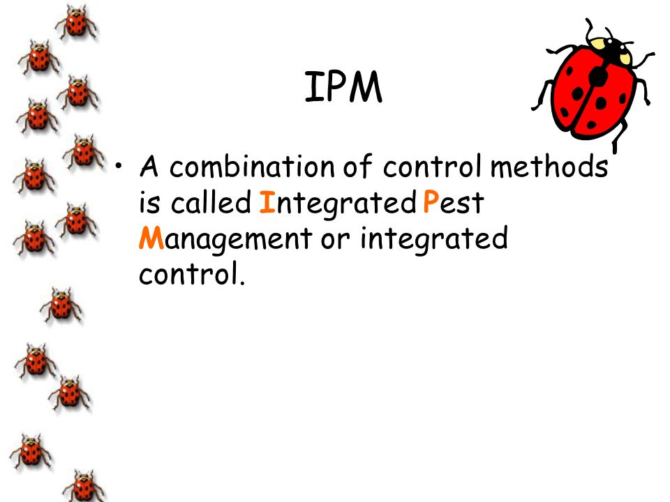 IPM A combination of control methods is called Integrated Pest Management or integrated control.